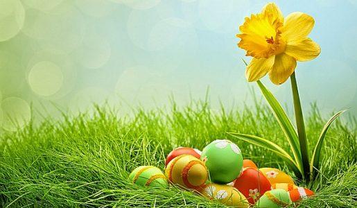 боя за яйца, безвредни оцветители