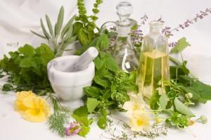 culinary-herbs