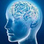 Поддържане на мозъка