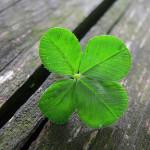поверия за късмет