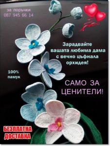 орхидеи за подарък