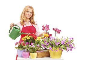 грижи за цветята